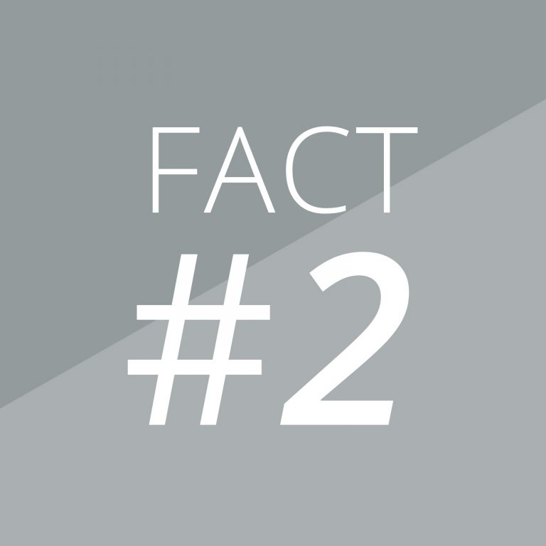 Fact 2-Magazino-Banner