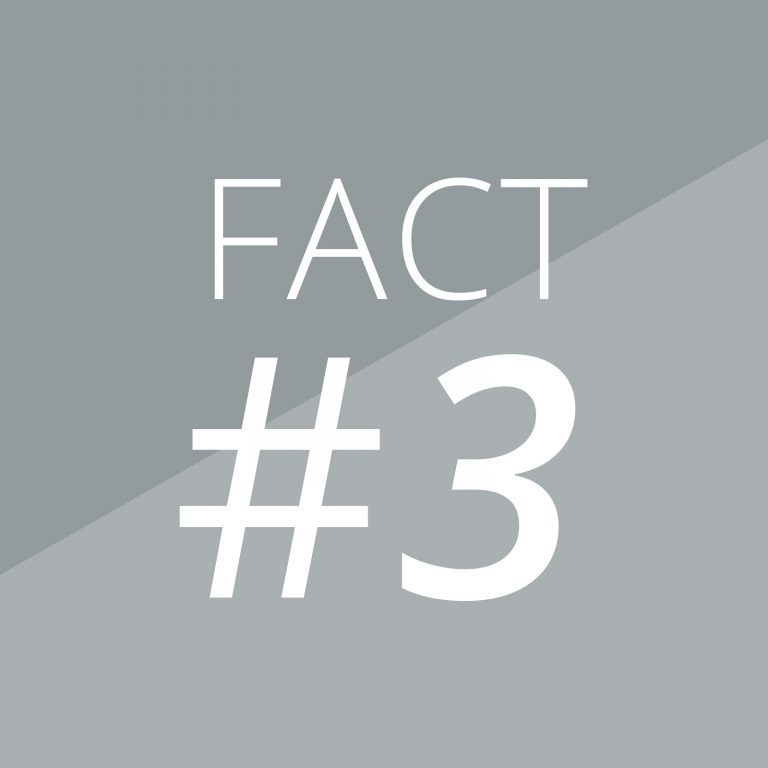 Fact 3-Magazino-Banner