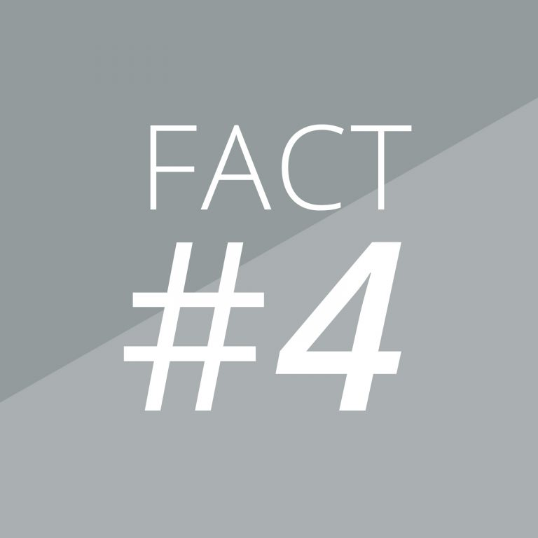 Fact 4-Magazino-Banner